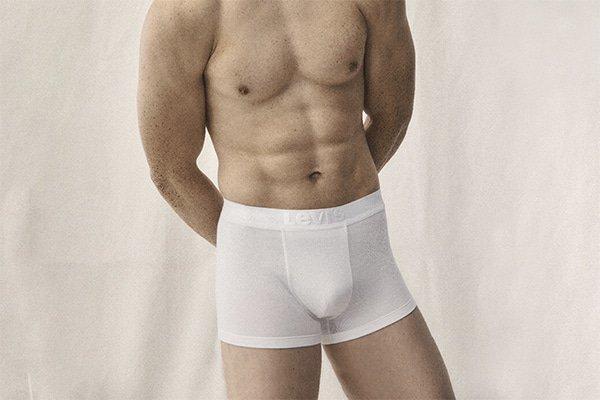 Levi's premium: duurzame boxers met een upgrade