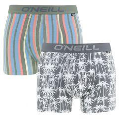 boxers 2-pack palm stripe multi
